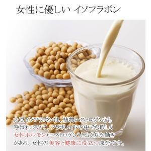 SOY抹茶&豆乳ジェラート10個セット|vene|02