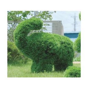 人工植物 動物トピアリー50cm ゾウS|venusclub