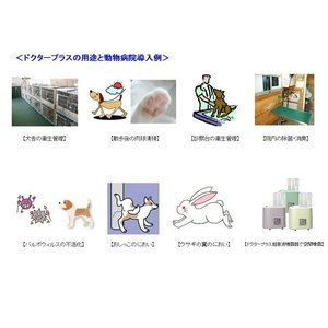 ドクタープラス ペット用 500ml  次亜塩素酸 vercomstore 04