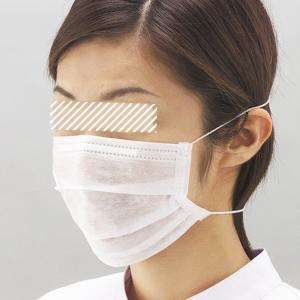 クリーンマスク オーバーヘッド式 100枚入 F210 個人向け ウイルス対策 花粉対策 予防|verdexcel-medical