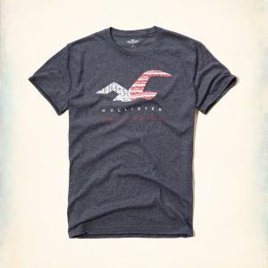 ホリスター HOLLISTER Tシャツ メンズ ロゴ 半袖  Americana Graphic Tee 62358 ネイビーレッド