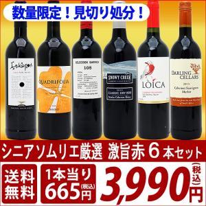 (送料無料)シニアソムリエ厳選 直輸入 激旨赤ワイン6本セット^W0AFD6SE^|veritas