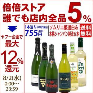 ワインセット (送料無料)ソムリエ厳選白&本格シャンパン製法入り5本セット (第58弾)(白3本+泡2本)^W0NW58SE^|veritas