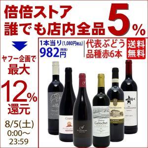 ワインセット (送料無料) 代表ぶどう品種赤6本セット(第8...