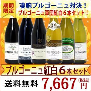 ワインセット (送料無料) 凄腕ブル対決!ブルゴーニュ軍団紅白6本セット!≪第10弾≫(ワイン ギフト)(赤ワイン)(白ワイン)^W0WD10SE^|veritas