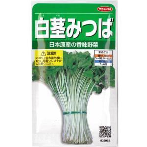 野菜の種/種子 白茎三ツ葉・ミツバ みつば 10ml(メール便発送)サカタのタネ 種苗|vg-harada