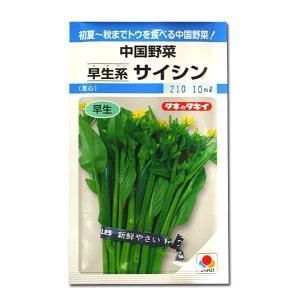 野菜の種/種子 サイシン・中国野菜 10ml (メール便可能)タキイ種苗|vg-harada