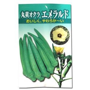 野菜の種/種子 丸莢オクラ・エメラルド 12ml (メール便可能)|vg-harada