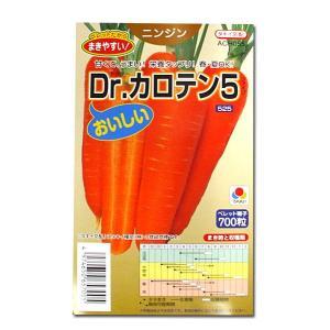 野菜の種/種子 Dr.カロテン5・ニンジン 700粒 (メール便可能)タキイ種苗|vg-harada