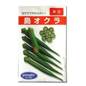 野菜の種/種子 島オクラ 20ml (メール便可能)|vg-harada