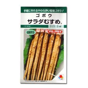 野菜の種/種子 サラダむすめ・ごぼう 5ml (メール便可能)タキイ種苗|vg-harada