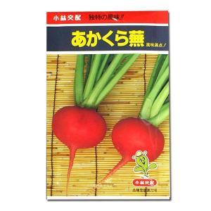 野菜の種/種子 あかくら蕪・カブ 4ml (メール便可能)|vg-harada