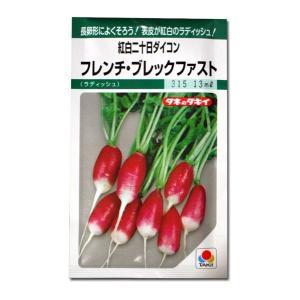 野菜の種/種子 フレンチ ブレックファスト・紅白二十日だいこん 13ml (メール便可能)タキイ種苗|vg-harada