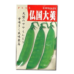 野菜の種/種子 仏国大莢・きぬさやえんどう 50ml (メール便可能)|vg-harada