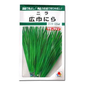 野菜の種/種子 広巾にら ニラ 15ml (メール便可能)タキイ種苗|vg-harada