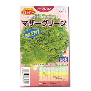 野菜の種/種子 マザーグリーン・リーフレタス 100粒 (メール便可能)タキイ種苗|vg-harada