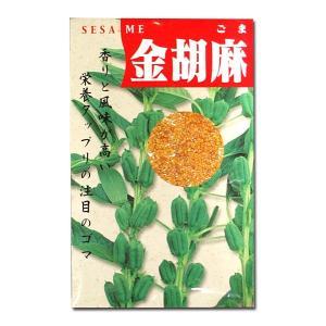 野菜の種/種子 金胡麻・ごま 20ml (メール便可能)|vg-harada