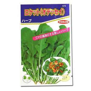 野菜の種/種子 ロケット・ルッコラ・イタリア野菜 2ml (メール便可能)サカタのタネ|vg-harada