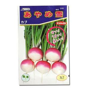 野菜の種/種子 あやめ雪・カブ 3ml (メール便可能)サカタのタネ|vg-harada