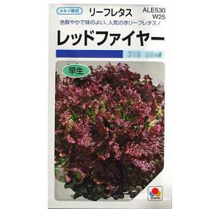野菜の種/種子 レッドファイヤー・リーフレタス 1.5ml (メール便可能)タキイ種苗|vg-harada