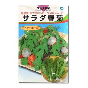 野菜の種/種子 サラダ春菊・シュンギク 30ml (メール便可能)|vg-harada