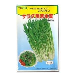 野菜の種/種子 サラダ用京水菜・みずな 12ml (メール便発送)|vg-harada