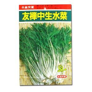 野菜の種/種子 友禅中生水菜・ミズナ (メール便可能)|vg-harada
