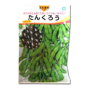 野菜の種/種子 たんくろう・えだまめ 1dl (メール便可能)|vg-harada