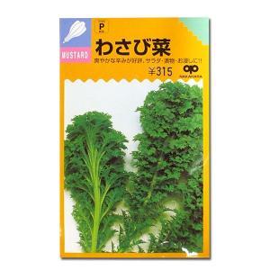 野菜の種/種子 わさび菜 6ml (メール便発送)|vg-harada