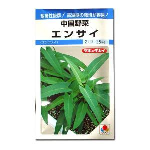 野菜の種/種子 エンサイ・中国野菜 あさがおな 15ml(メール便発送)タキイ種苗 vg-harada