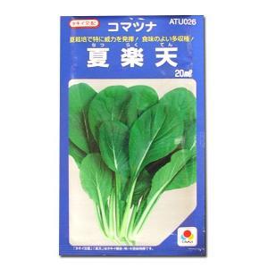 野菜の種/種子 夏楽天・コマツナ 小松菜 こまつ菜 20ml(メール便発送)タキイ種苗|vg-harada