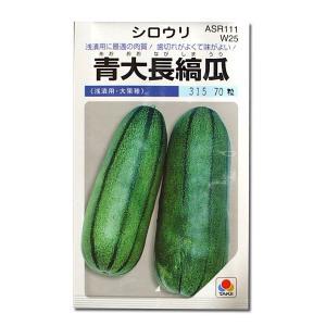 野菜の種/種子 青大長縞瓜・シロウリ 70粒 (メール便可能)タキイ種苗|vg-harada