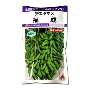 野菜の種/種子 福成・茶えだまめ 90ml (メール便可能)タキイ種苗|vg-harada
