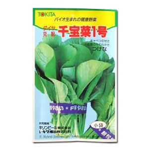 野菜の種/種子 千宝菜1号・つけな (メール便発送) vg-harada