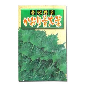 野菜の種/種子 かおり青大葉 8ml (メール便発送)|vg-harada
