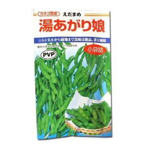 野菜の種/種子 湯あがり娘・えだまめ 枝豆 100粒(メール便発送)|vg-harada
