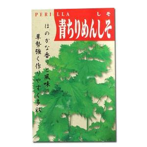野菜の種/種子 青ちりめんしそ 7ml (メール便発送)|vg-harada