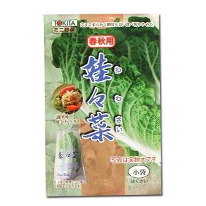 野菜の種/種子 娃々菜・わわさい・ハクサイ 1g (メール便可能)|vg-harada