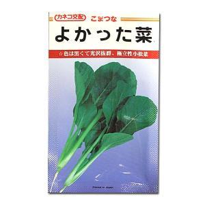 野菜の種/種子 よかった菜・コマツナ 20ml (メール便発送)|vg-harada