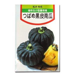 野菜の種/種子 つばめ黒皮南瓜・カボチャ 20粒 (メール便可能)|vg-harada