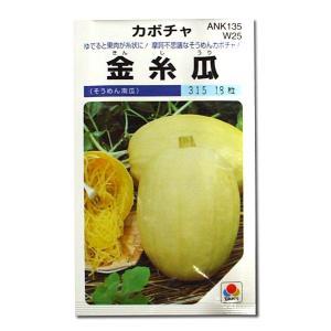 野菜の種/種子 金糸瓜・そうめんカボチャ 18粒 (メール便可能)タキイ種苗|vg-harada