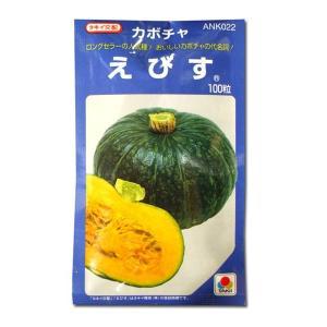 野菜の種/種子 えびす・カボチャ 100粒 (メール便可能/大袋)タキイ種苗|vg-harada