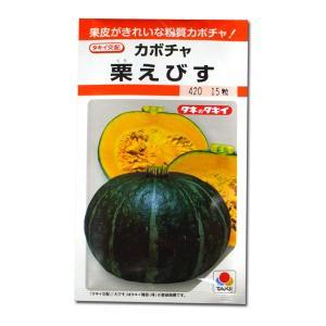 野菜の種/種子 栗えびす・かぼちゃ カボチャ 南瓜 15粒 (メール便可能)タキイ種苗|vg-harada