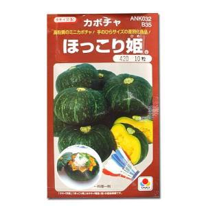 野菜の種/種子 ほっこり姫・カボチャ 10粒 (メール便可能)タキイ種苗|vg-harada