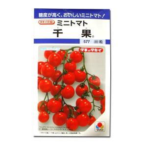 野菜の種/種子 千果・ミニトマト 18粒 (メール便可能)タキイ種苗 vg-harada