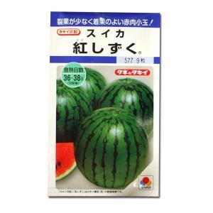 野菜の種/種子 紅しずく・スイカ すいか 西瓜 9粒 (メール便可能)タキイ種苗|vg-harada