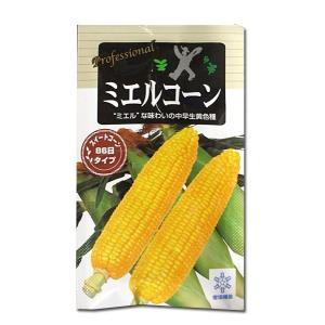 野菜の種/種子 ミエルコーン・とうもろこし トウモロコシ 200粒 (メール便可能)|vg-harada