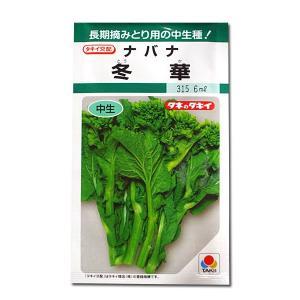 野菜の種/種子 冬華・ナバナ・菜花 6ml(メール便発送)タキイ種苗 vg-harada