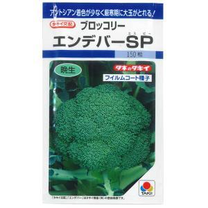 野菜の種/種子 エンデバーSP・ブロッコリー 170粒 (メール便可能)タキイ種苗 vg-harada