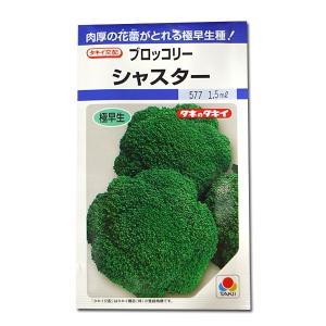 野菜の種/種子 シャスター・ブロッコリー 1.5ml(メール便発送)タキイ種苗|vg-harada